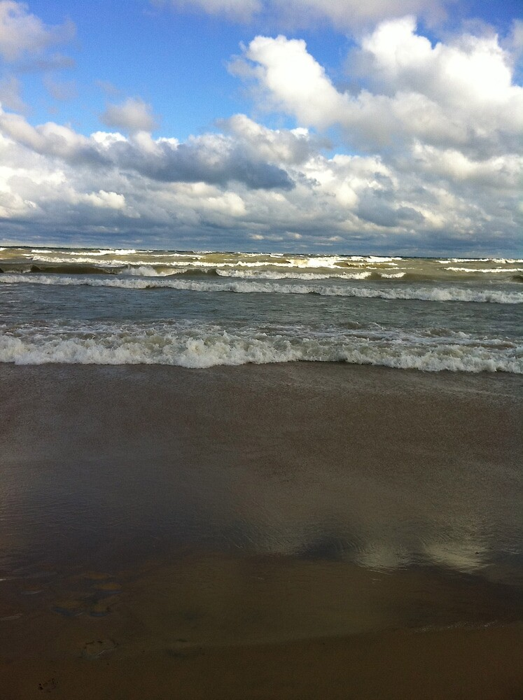 lake michigan waves by Eve Landsman