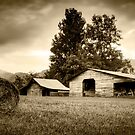 North Carolina by RayDevlin