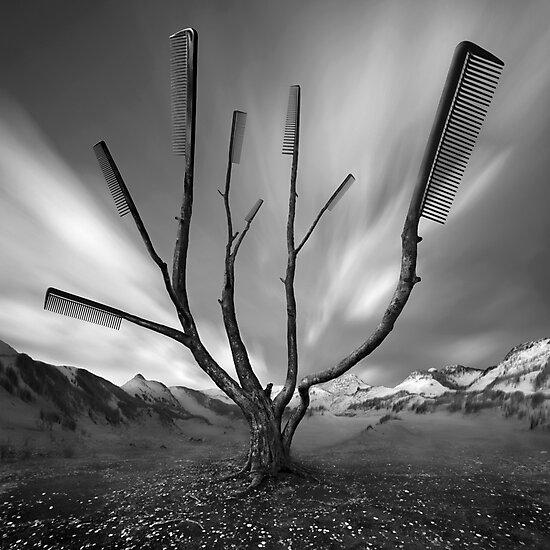 Dandruff Tree by KLIMAS