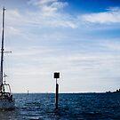Sailing by Ruben D. Mascaro