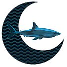 Shark Side of the Moon by Bill Cournoyer