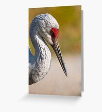 Coy Crane Greeting Card