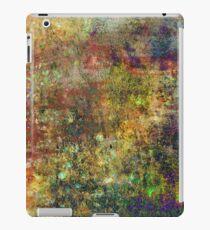 Abstract Rainbow. IPad. iPad Case/Skin