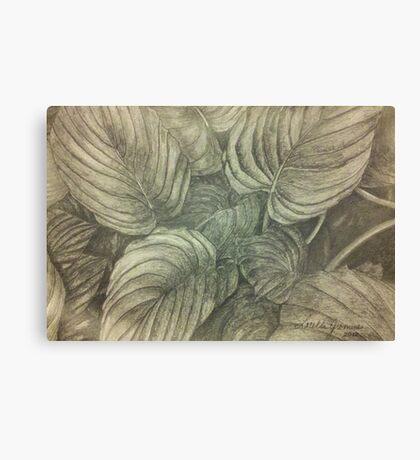 Hasta Plant Canvas Print