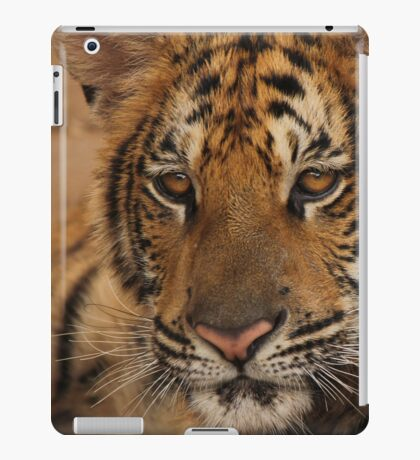 Tiger series 004 iPad Case/Skin