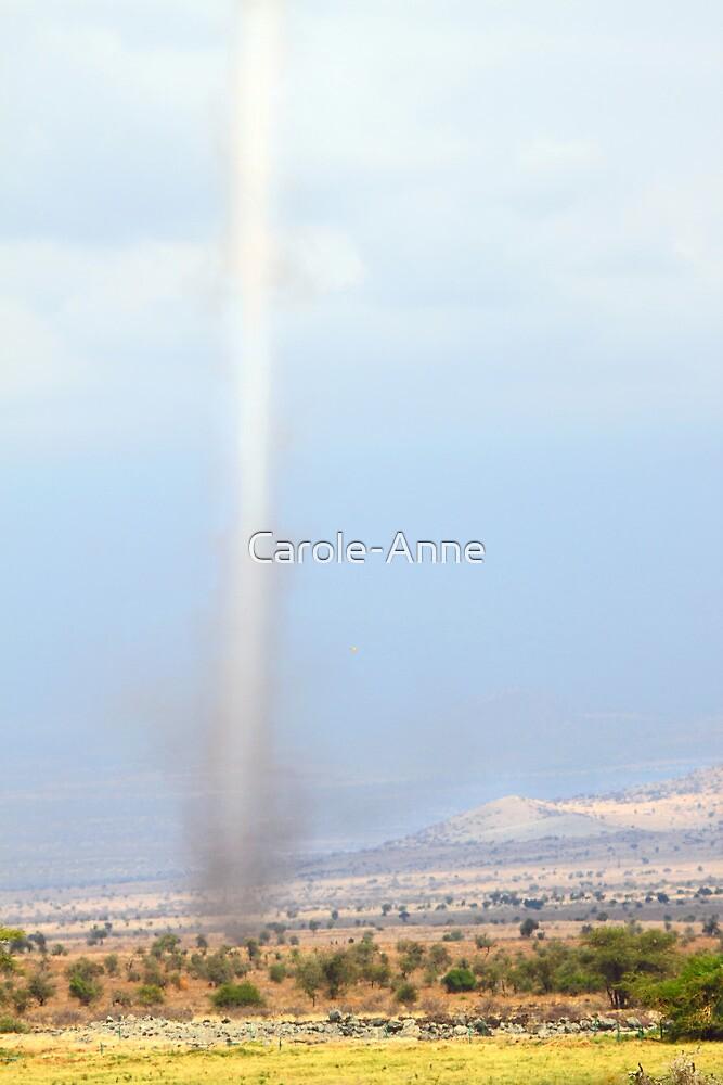 Spiral Wind by Carole-Anne