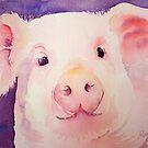 Piggywig by Ruth S Harris
