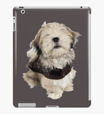 Shaggy Dog Story iPad Case/Skin