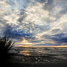 Overcast Skies by Jonicool