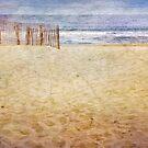 To the Beach by Debra Fedchin
