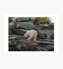 Big Bear Paws Art Print