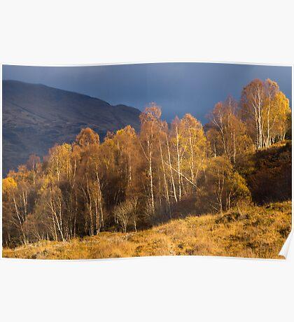 Light in Glen Lyon, Perthshire, Scotland Poster