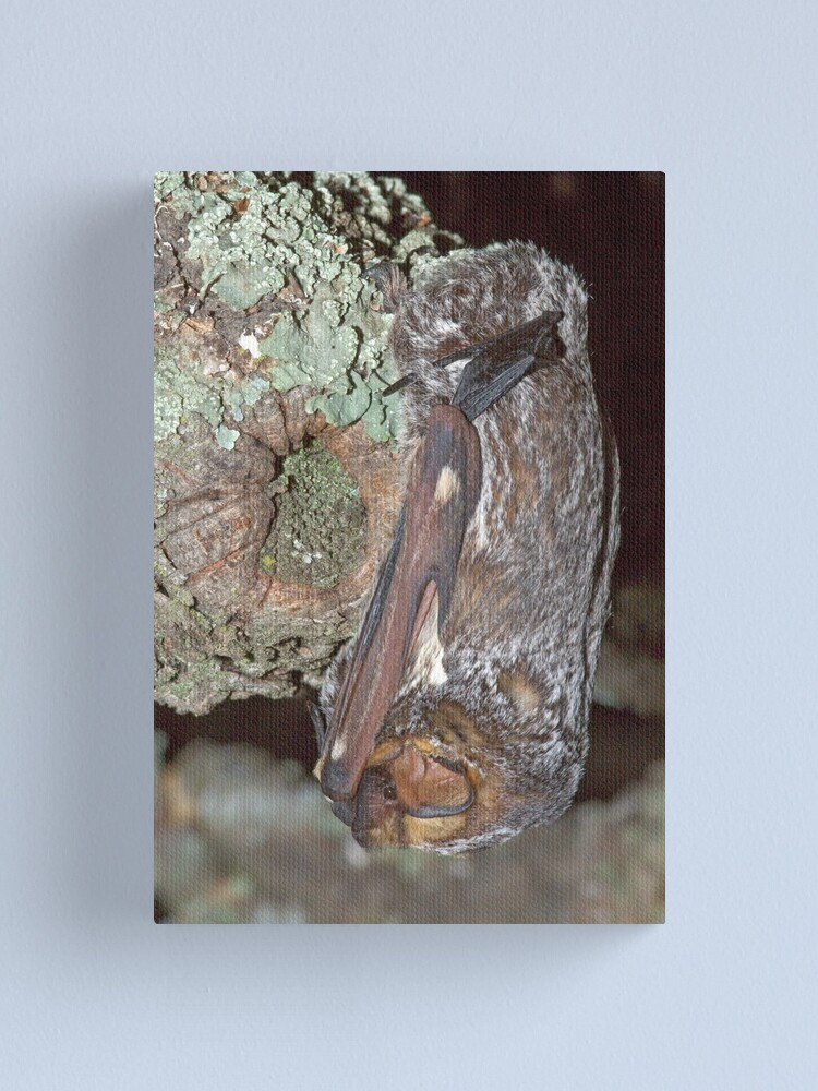 Alternate view of The art of camouflage Canvas Print