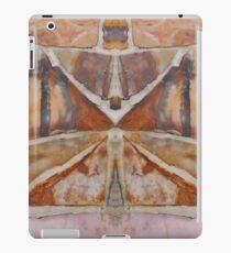 The Wall of Jericho iPad Case/Skin