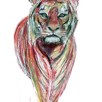 Tiger by TomConway