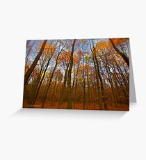 Autumn  - My wonderful Galicia by Andrzej Goszcz. Featured 5 star Excellence Valerie Anne Kelly. Greeting Card
