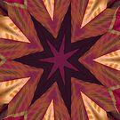 Inner Star IPad by Deborah  Benoit