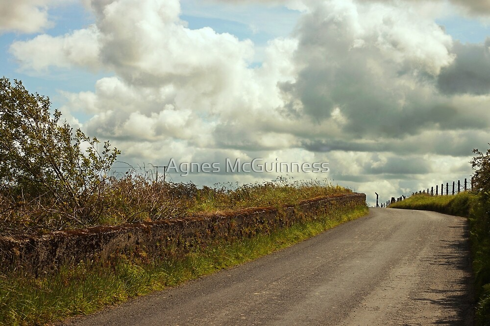 Country road  by Agnes McGuinness