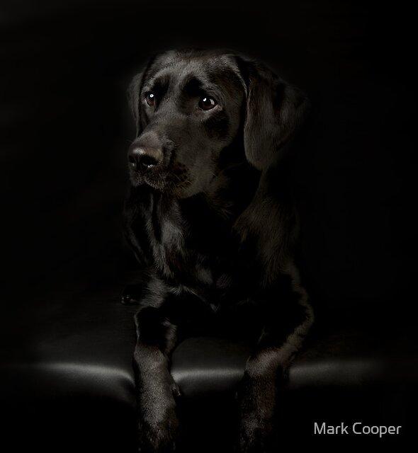 Jayde by Mark Cooper