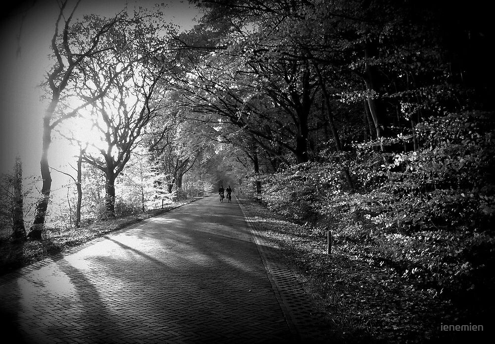 Light Play in Autumn by ienemien