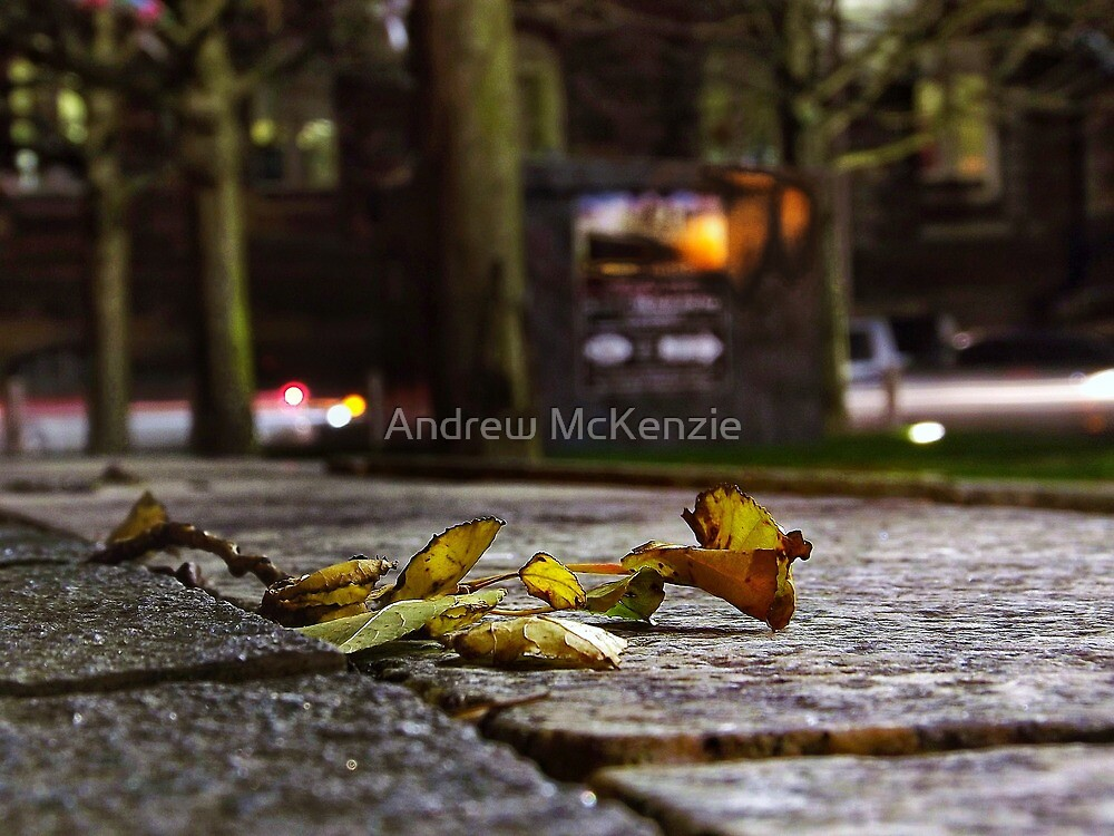 Busy Leaf by Andrew McKenzie
