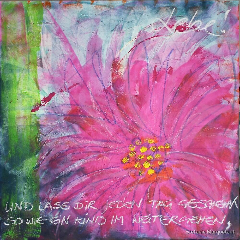 Frühlingserwachen: »pink daisy« von Stefanie Marquetant
