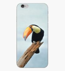 a toucan can! iPhone Case