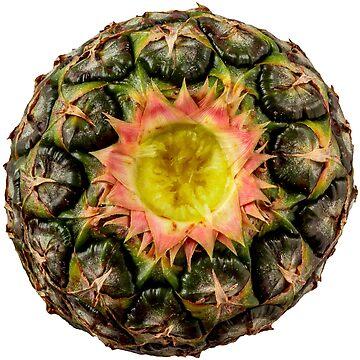 Pineapple by alexrvan