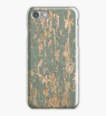Paint iphone/ipod case iPhone Case/Skin