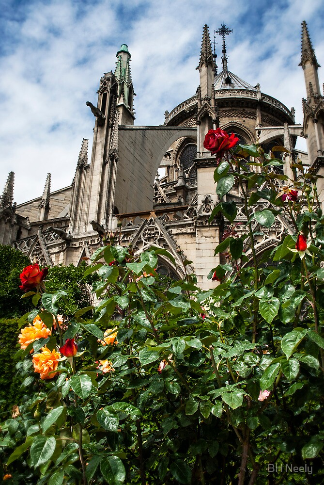Flying Buttresses with Roses by BH Neely