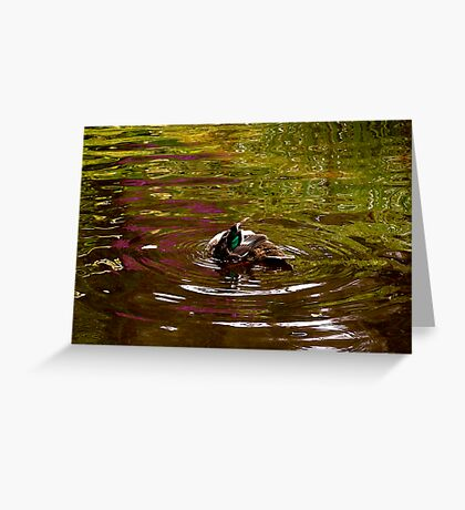 Duck reflections Greeting Card