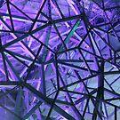 Purple Web by CKImagery