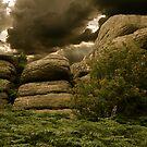 Battle of Blackingstone Rock by angelvixen