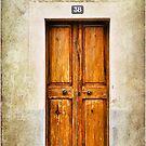 The Spanish Door by marina63