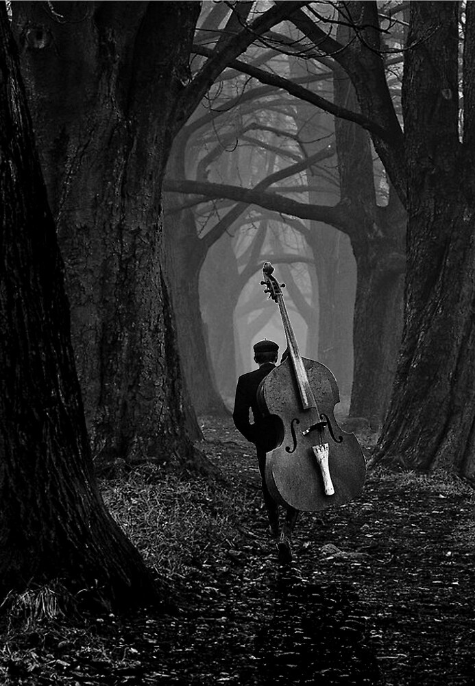 the musician by Loui  Jover