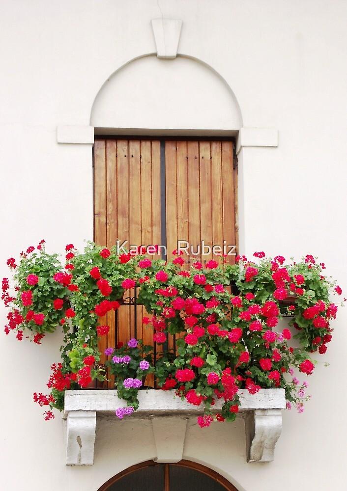Flower Box by Karen  Rubeiz