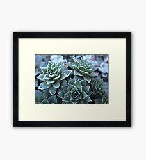 Frost Work Framed Print