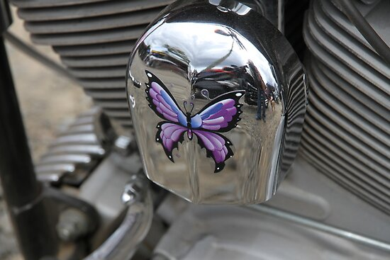 Purple Butterfly On Chrome by aussiebushstick