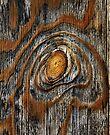 iPad Case.  Wood knot .4 by Alex Preiss