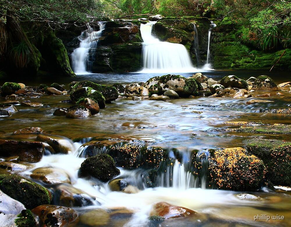 Shearers Hut Creek Falls on the Overland Track , Tasmania , Australia by phillip wise