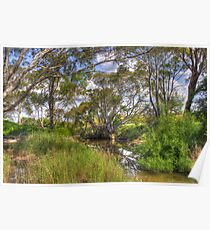 Yass River  Rural  NSW Poster