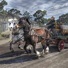 Horses On The Run by djzontheball
