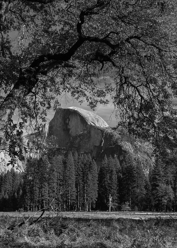 Half Dome In Portrait by Vince Russell