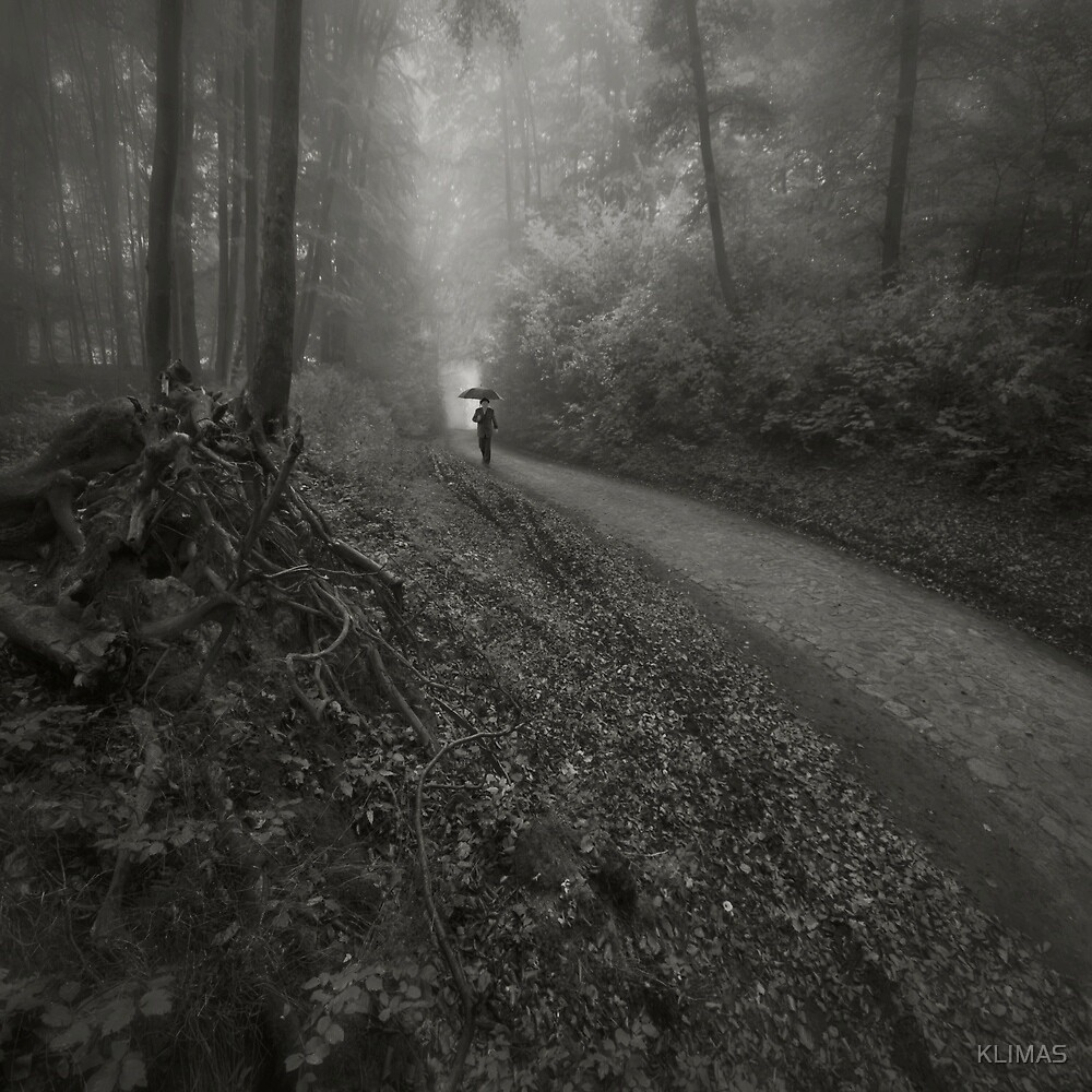 The Forest by KLIMAS
