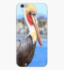 Brown Pelican on Oceanside Pier iPhone Case