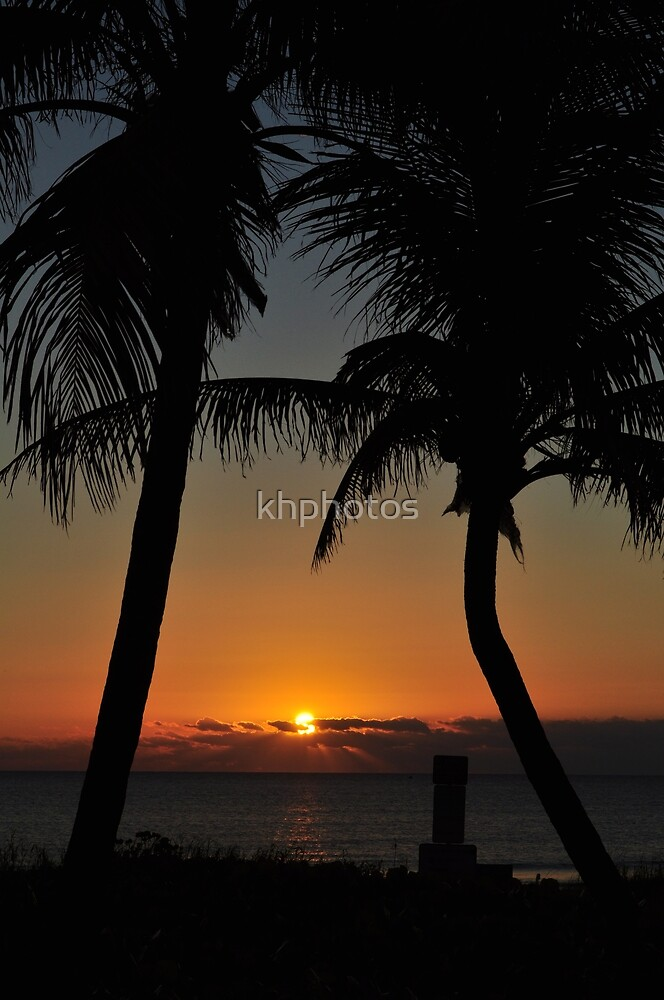 Sunrise supporting the palm trees by khphotos