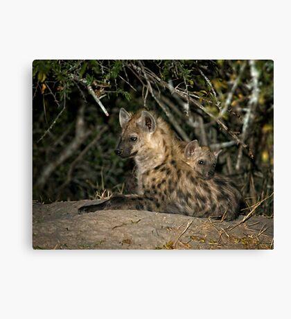 Hyena Den Canvas Print