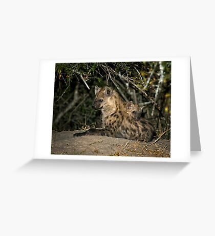 Hyena Den Greeting Card