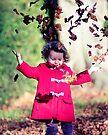Autumn is here by Matt Sillence