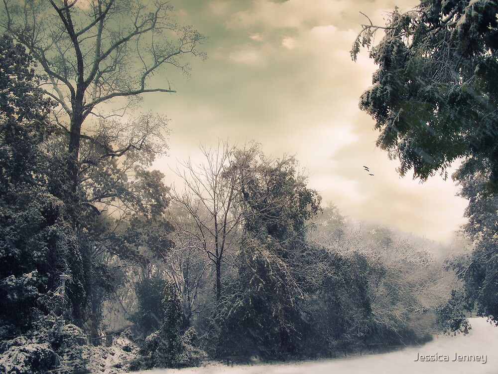 Winter's Tones by Jessica Jenney